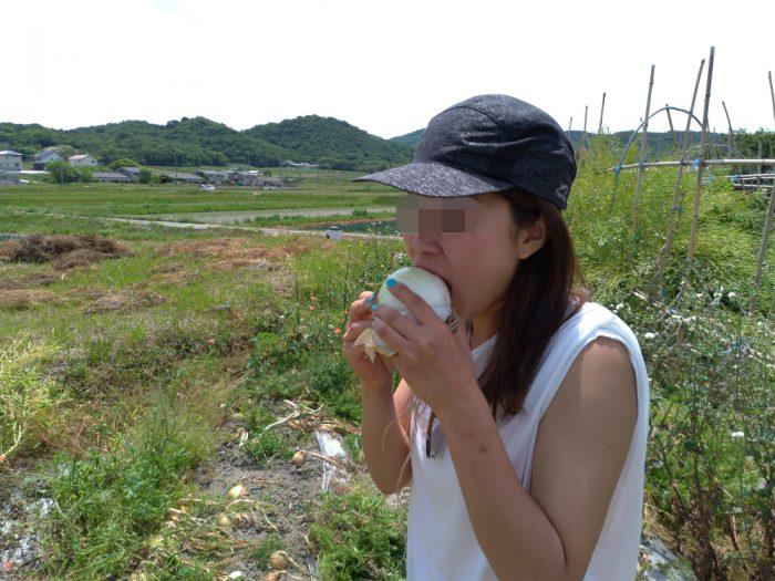 淡路島 たまねぎ まるかぶり