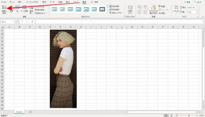 Excel 写真の背景を削除