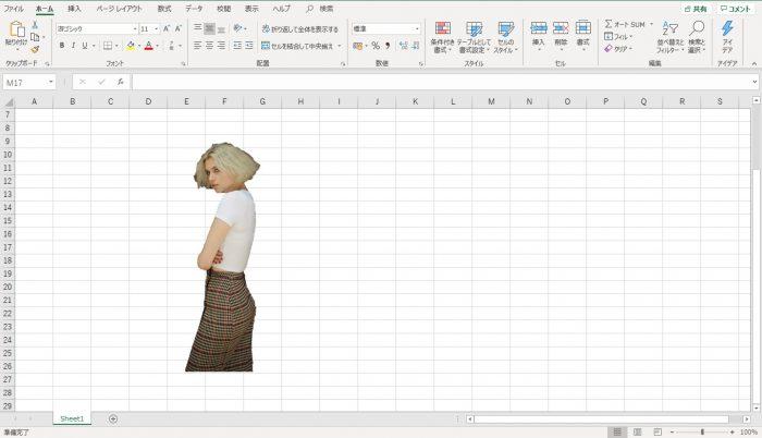 Excel 画像背景削除